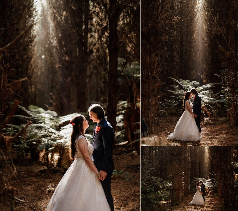 Beautiful wedding photography in the woods in Tauranga