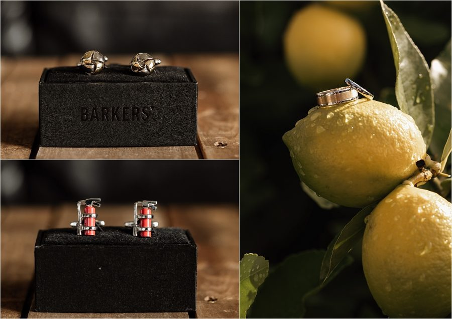 Wedding rings on lemon tree and grooms men's cuff links