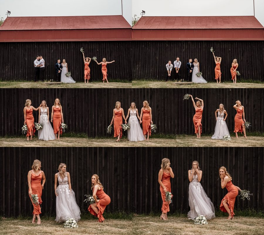 Barn bridal party at Waiterenui