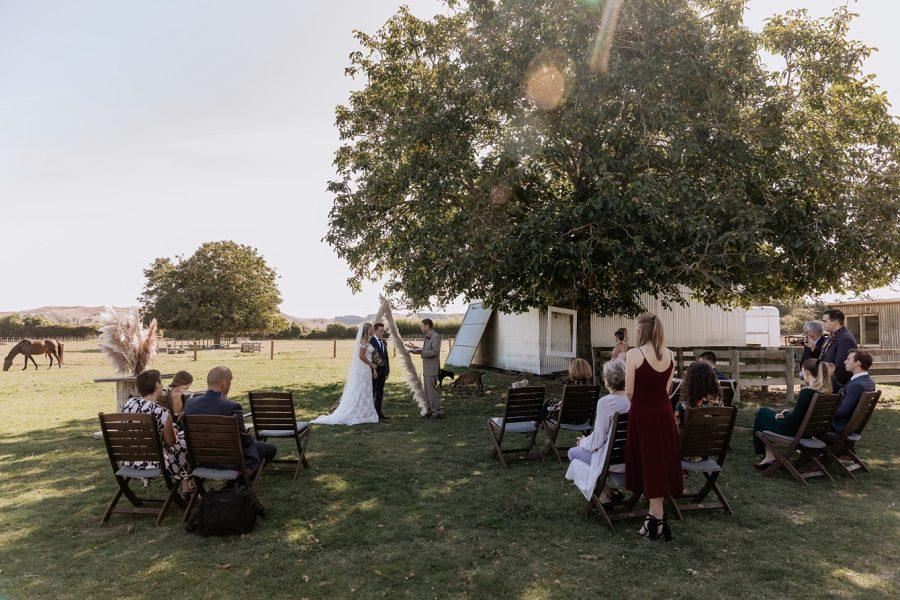 Hawkes Bay farm wedding ceremony in progress