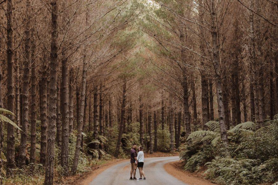 Engagment photos taken in Rotorua forest