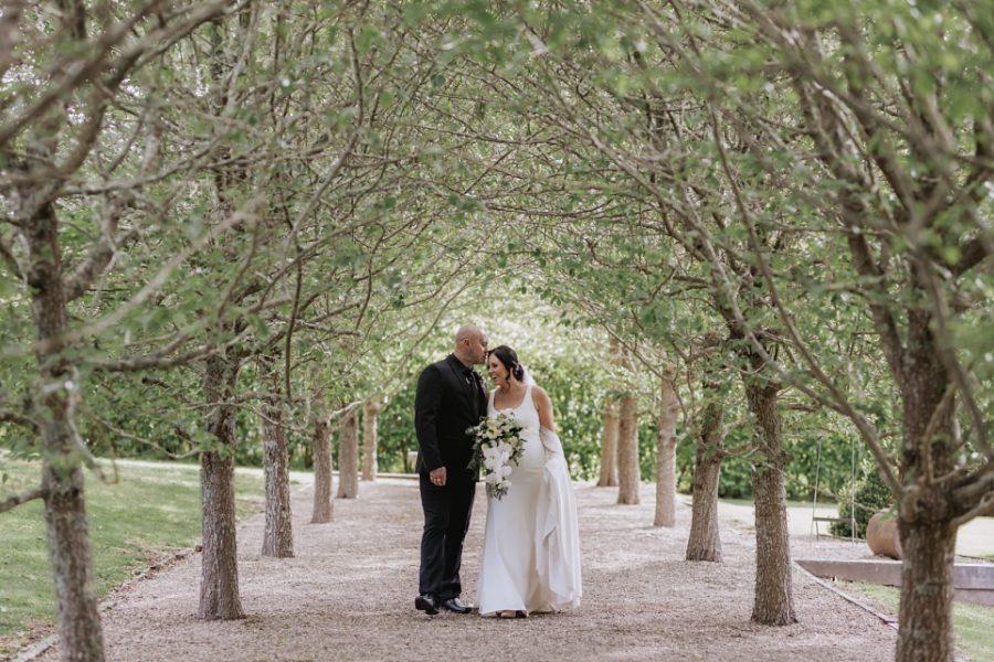Groom kisses bride at Ataahua pear tree aisle