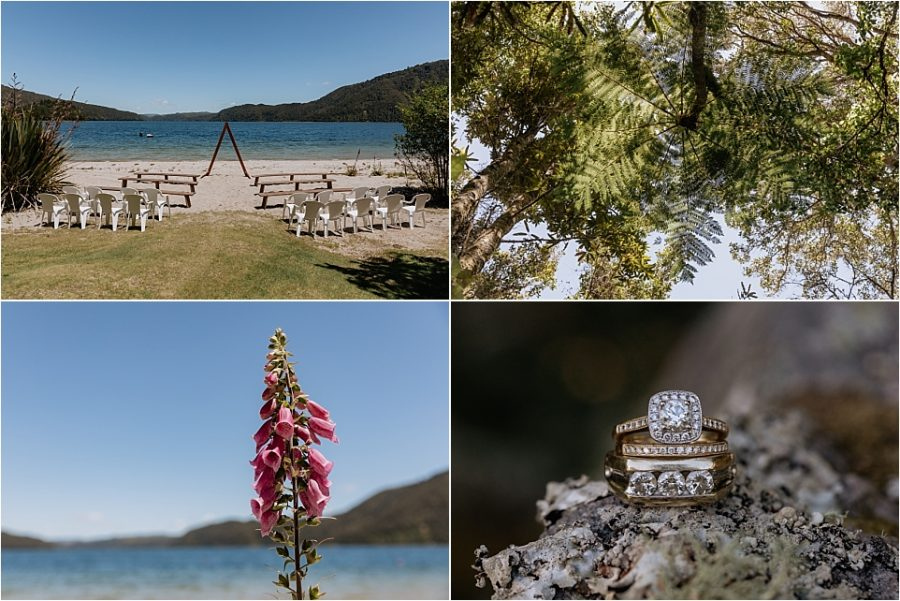 Lakes scene with tree tops, fox gloves and wedding rings