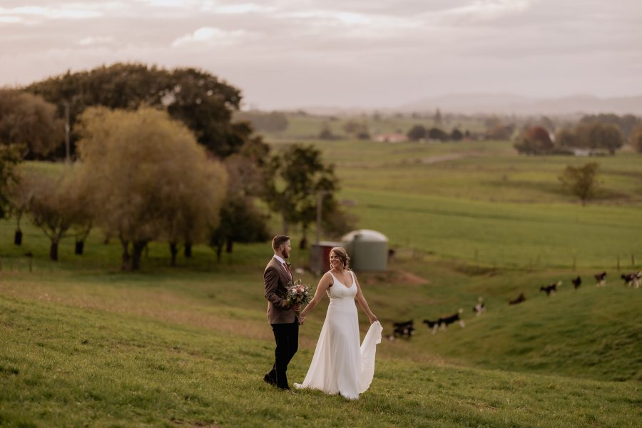 Bride and groom walking over farm in the waikato